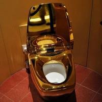 Gold Toilet 1