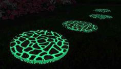 Glow In The Dark Gardens Gallery Image 1