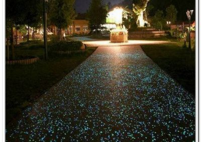Glow In The Dark Gardens Gallery Image 14