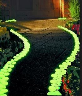 Glow In The Dark Gardens Gallery Image 17