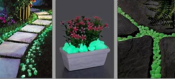 Glow In The Dark Gardens Gallery Image 19