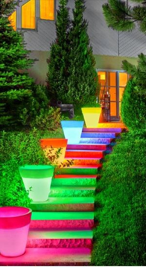 Glow In The Dark Gardens Gallery Image 3