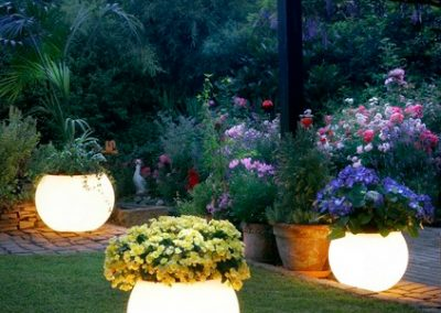 Glow In The Dark Gardens Gallery Image 37