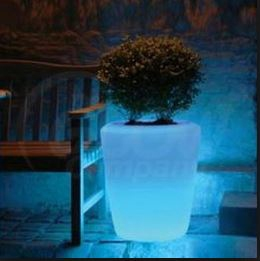 Glow In The Dark Gardens Gallery Image 8