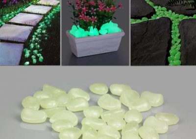 Glow In The Dark Gardens Gallery Image 2